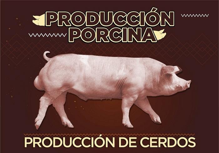 Producción de cerdos