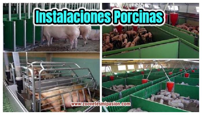 Instalaciones porcinas