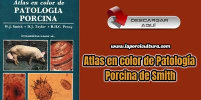 Atlas en color de Patología Porcina de Smith